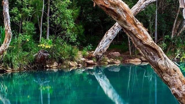 upper-stony-creek-byfield-national-park-yeppoon.jpg